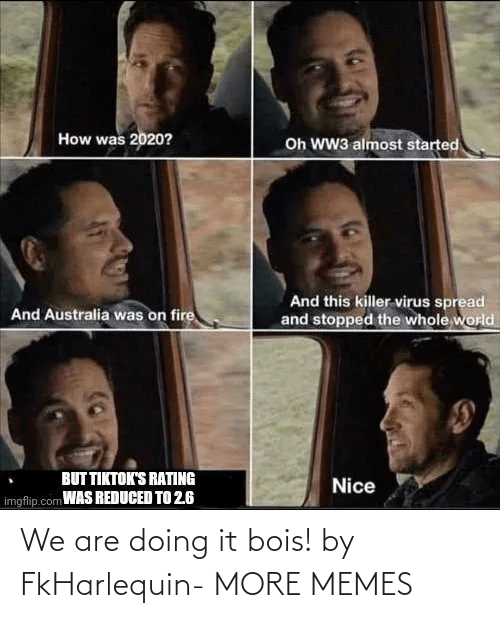 Are Doing: We are doing it bois! by FkHarlequin- MORE MEMES