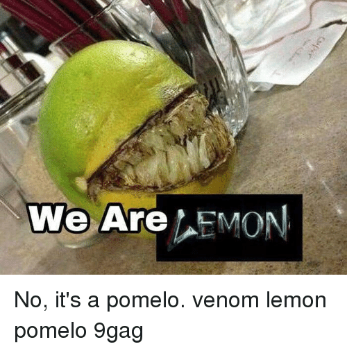 9gag, Memes, and 🤖: We Are EMON No, it's a pomelo. venom lemon pomelo 9gag