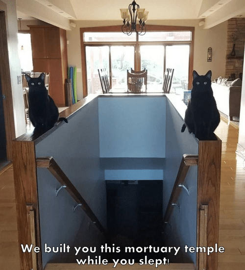 heh: We built you this mortuary temple  while you slept  HEH