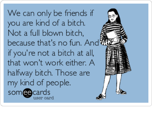 No Fun: We can only be friends if  you are kind of a bitch.  Not a full blown bitch,  because that's no fun. And  if you're not a bitch at all,  that won't work either. A  halfway bitch. Those are  my kind of people.  somee cards  user card