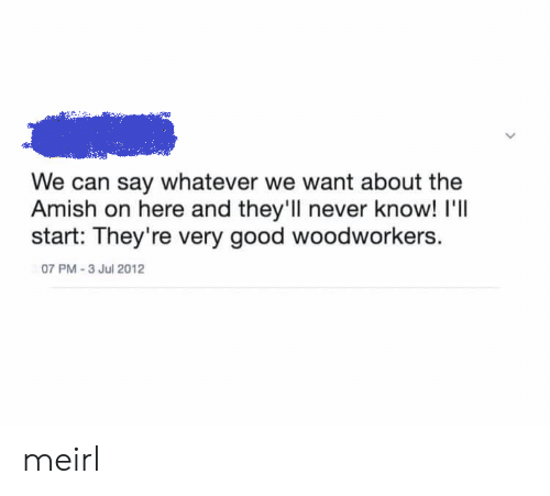 amish: We can say whatever we want about the  Amish on here and they'll never know! I'll  start: They're very good woodworkers.  07 PM-3 Jul 2012 meirl