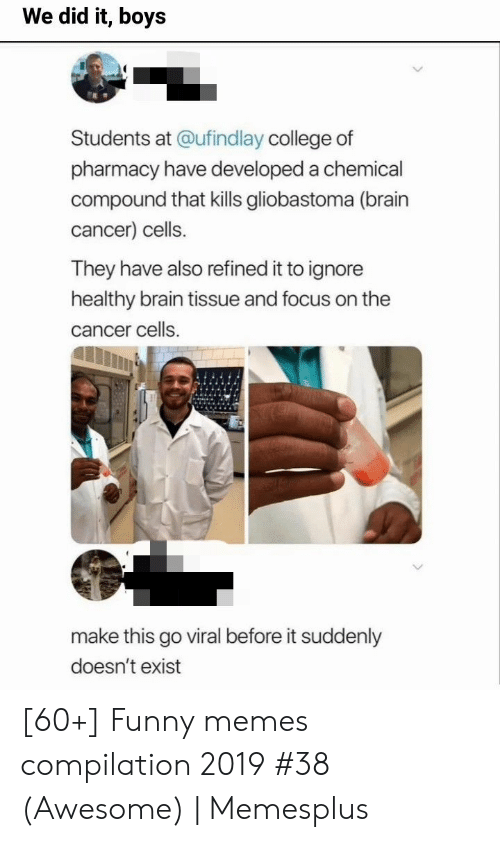 compilation: We did it, boys  Students at @ufind lay college of  pharmacy have developed a chemical  compound that kills gliobastoma (brain  cancer) cells.  They have also refined it to ignore  healthy brain tissue and focus on the  cancer cells  make this go viral before it suddenly  doesn't exist [60+] Funny memes compilation 2019 #38 (Awesome) | Memesplus