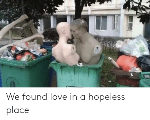 We Found: We found love in a hopeless place