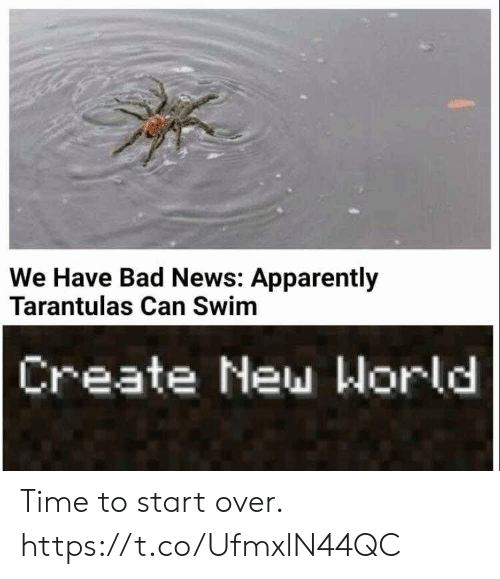 apparently: We Have Bad News: Apparently  Tarantulas Can Swim  Create New World Time to start over. https://t.co/UfmxlN44QC