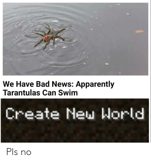 apparently: We Have Bad News: Apparently  Tarantulas Can Swim  Create New World Pls no