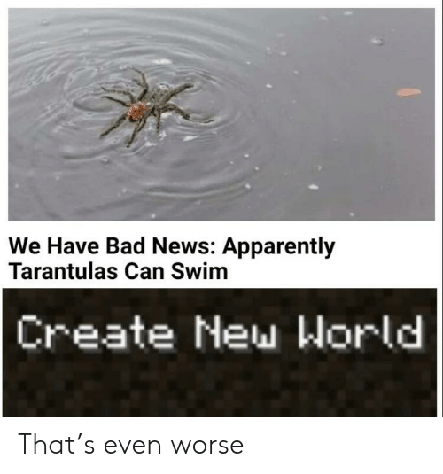 apparently: We Have Bad News: Apparently  Tarantulas Can Swim  Create New World That's even worse