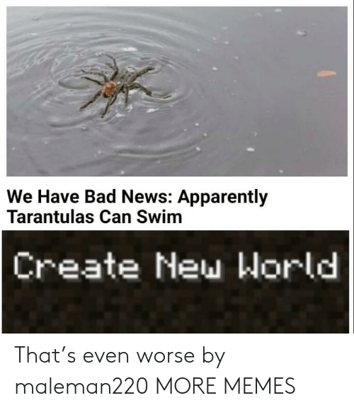 apparently: We Have Bad News: Apparently  Tarantulas Can Swim  Create New World That's even worse by maleman220 MORE MEMES