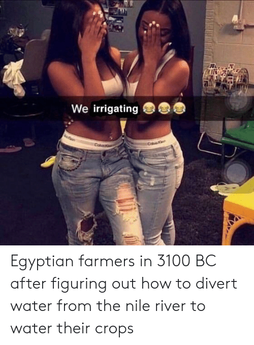 Egyptian: We irrigating Egyptian farmers in 3100 BC after figuring out how to divert water from the nile river to water their crops