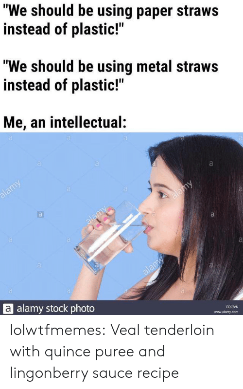"""intellectual: """"We should be using paper straws  instead of plastic!""""  """"We should be using metal straws  instead of plastic!""""  Me, an intellectual:  a  alamy  alamy  alamy  alamy  alamy stock photo  ED072N  www.alamy.com lolwtfmemes: Veal tenderloin with quince puree and lingonberry saucerecipe"""