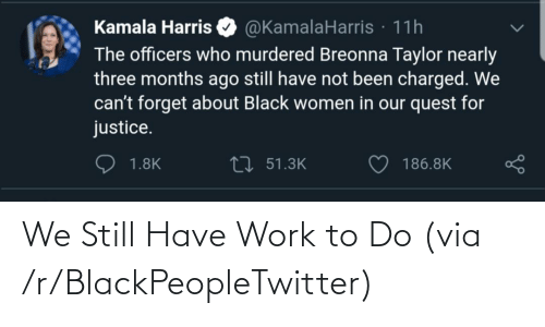 To Do: We Still Have Work to Do (via /r/BlackPeopleTwitter)