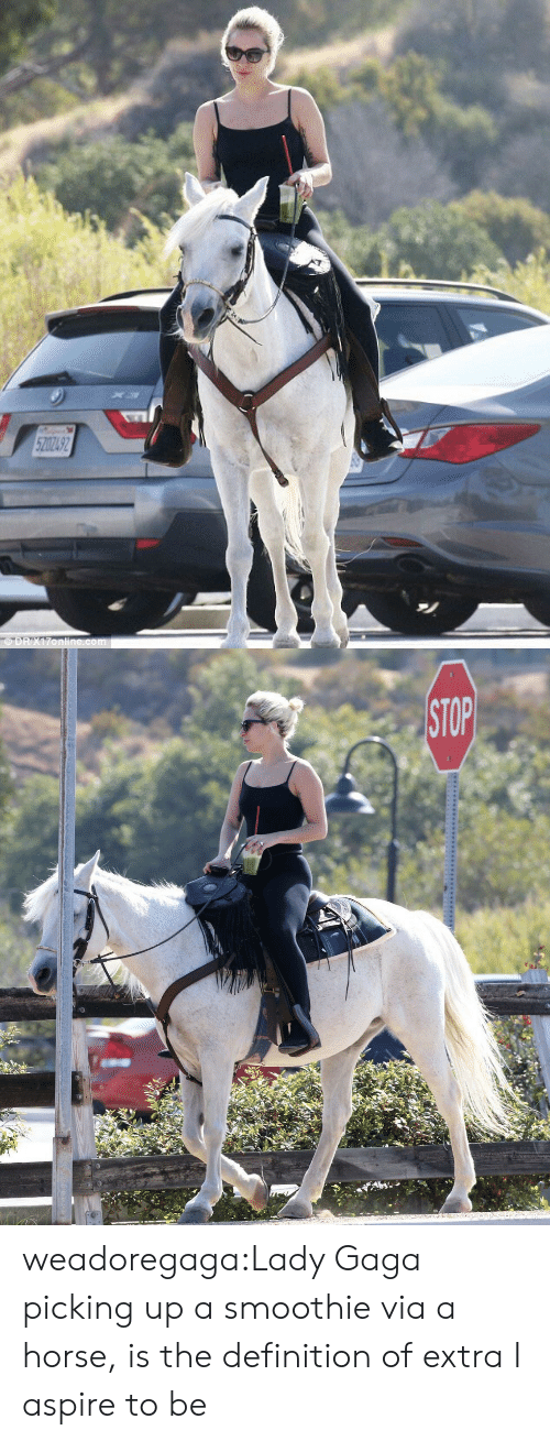 Lady Gaga: weadoregaga:Lady Gaga picking up a smoothie via a horse, is the definition of extra I aspire to be