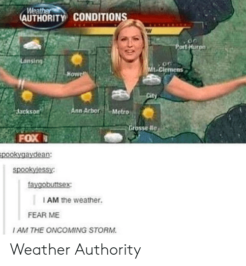 Dle: Weat  AUTHORITY CONDITION  ort Hurpn  Lansing  t-Clemens  Howe  Jackson  nn ArborMetro  rosse dle  FOX  pookygaydean:  faygobuttsex  I AM the weather.  FEAR ME  I AM THE ONCOMING STORM Weather Authority