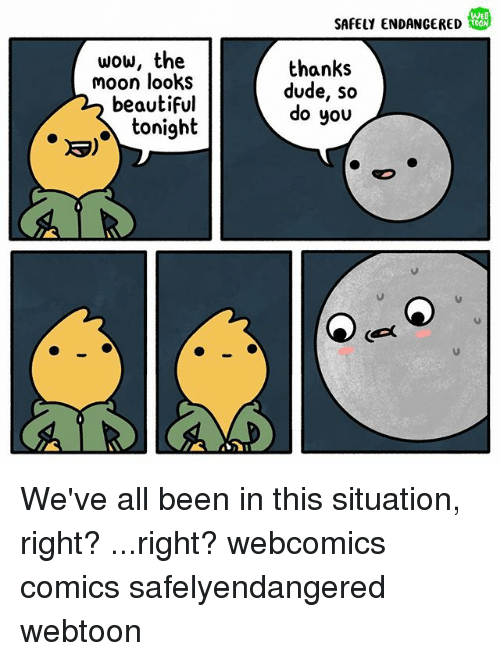 Beautiful, Dude, and Memes: WEB  SAFELY ENDANGERED  wow, the  moon looks  beautiful  tonight  thanks  dude, so  do you We've all been in this situation, right? ...right? webcomics comics safelyendangered webtoon