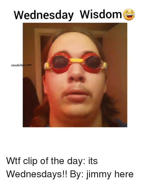 wednesday wisdom hood clips com wtf clip of the day its 3356601 ✅ 25 best memes about hood clips hood clips memes