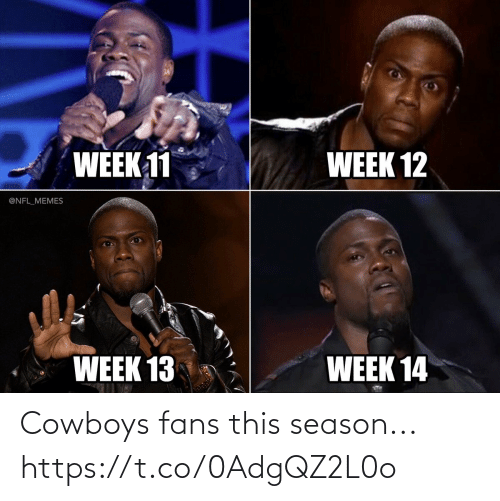 Dallas Cowboys: WEEK 11  WEEK 12  @NFL_MEMES  WEEK 13  WEEK 14 Cowboys fans this season... https://t.co/0AdgQZ2L0o