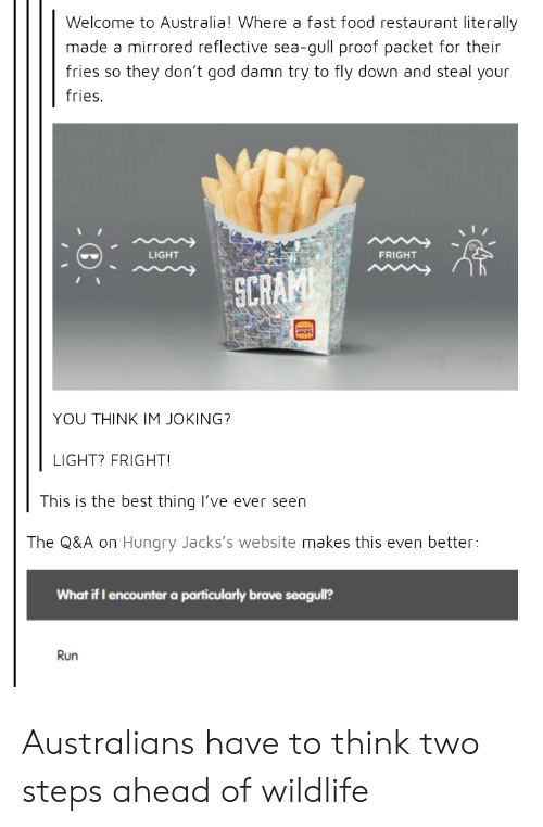 mirrored: Welcome to Australia! Where a fast food restaurant literally  made a mirrored reflective sea-gull proof packet for their  fries so they don't god damn try to fly down and steal your  fries.  LIGHT  FRIGHT  SCR  YOU THINK IM JOKING?  LIGHT? FRIGHT  This is the best thing lI've ever seen  The Q&A on Hungry Jacks's website makes this even better:  What if I encounter a particularly brave seagull?  Run Australians have to think two steps ahead of wildlife