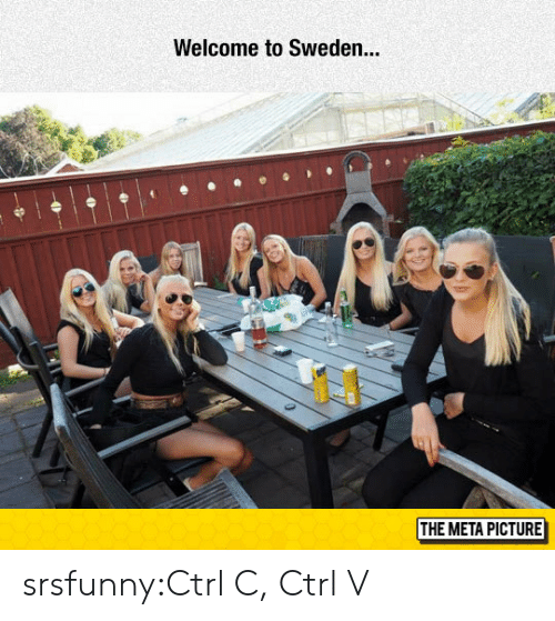 ctrl-c: Welcome to Sweden..  THE META PICTURE srsfunny:Ctrl C, Ctrl V