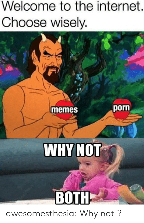 Porn Memes: Welcome to the internet.  Choose wisely.  porn  memes  WHYNOT  BOTH awesomesthesia:  Why not ?