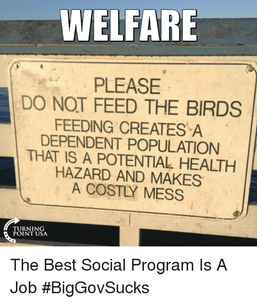 creat a: WELFARE  PLEASE  DO NOT FEED THE BIRDS  FEEDING CREATES A  DEPENDENT POPULATION  THAT IS A POTENTIAL HEALTH  HAZARD AND MAKES  A COSTLY MESS  TURNING  POINT USA. The Best Social Program Is A Job #BigGovSucks