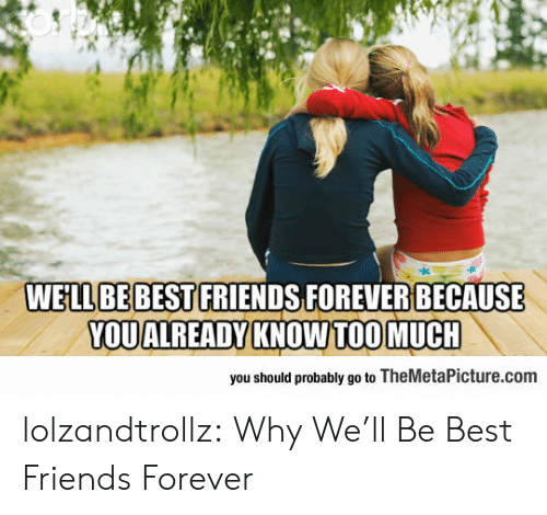 Friends, Tumblr, and Best: WELL BE BEST FRIENDS FOREVER BECAUSE  YOUALREADY KNOW TOOMUCH  you should probably go to TheMetaPicture.com lolzandtrollz:  Why We'll Be Best Friends Forever