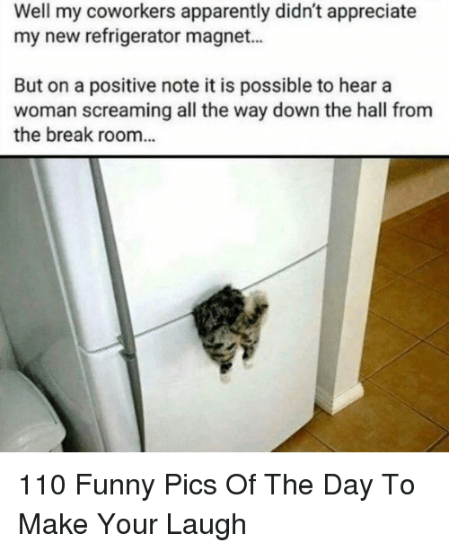 Refrigerator: Well my coworkers apparently didn't appreciate  my new refrigerator magnet...  But on a positive note it is possible to hear a  woman screaming all the way down the hall from  the break room... 110 Funny Pics Of The Day To Make Your Laugh