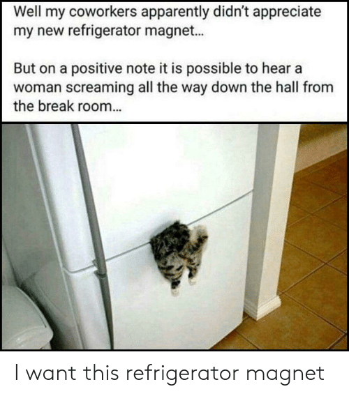 Refrigerator: Well my coworkers apparently didn't appreciate  my new refrigerator magnet...  But on a positive note it is possible to hear a  woman screaming all the way down the hall from  the break room... I want this refrigerator magnet