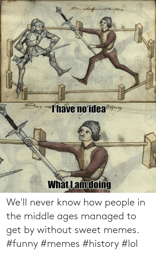 In The Middle: We'll never know how people in the middle ages managed to get by without sweet memes. #funny #memes #history #lol