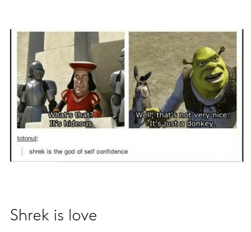 Shrek Is Love: Well: that's not very nice  It's just a donkeyo  Whatis that?  t3s  's hideous  totonut  shrek is the god of self confidence Shrek is love
