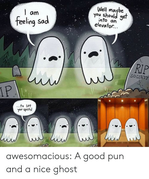 Tumblr, Blog, and Ghost: Well  you shoule  get  am  into an  elevator...  feeling Sad  RIP  RIP  SOCIETY  IP  to lift  your spirits! awesomacious:  A good pun and a nice ghost