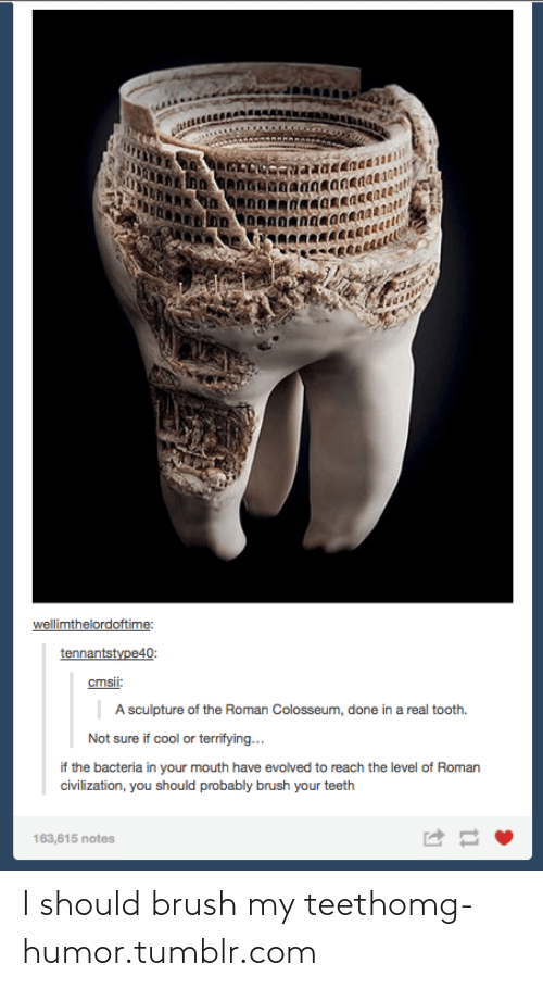 colosseum: wellimthelordoftime:  tennantstype40:  cmsii:  A sculpture of the Roman Colosseum, done in a real tooth.  Not sure if cool or terrifying...  if the bacteria in your mouth have evolved to reach the level of Roman  civilization, you should probably brush your teeth  163,615 notes I should brush my teethomg-humor.tumblr.com