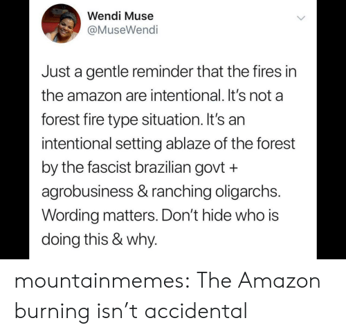 Muse: Wendi Muse  @MuseWendi  Just a gentle reminder that the fires in  the amazon are intentional. It's not a  forest fire type situation. It's an  intentional setting ablaze of the forest  by the fascist brazilian govt +  agrobusiness & ranching oligarchs.  Wording matters. Don't hide who is  doing this & why. mountainmemes:  The Amazon burning isn't accidental
