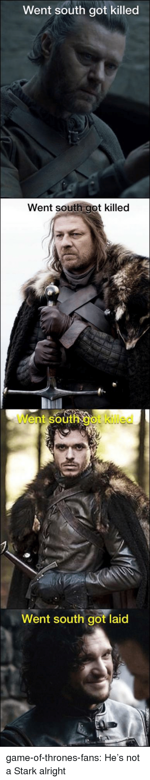 Got Laid: Went south got killed  Went south got killed  Went south got iled  Went south got laid game-of-thrones-fans:  He's not a Stark alright