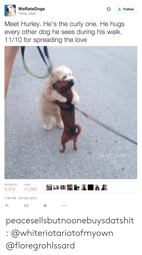 Love, Tumblr, and Blog: WeRateDogs  @dog_rates  *  + Follow  Meet Hurley. He's the curly one. He hugs  every other dog he sees during his walk.  11/10 for spreading the love  RETWEETS  LIKES  6,318 10,392  7:45 PM-22 Dec 2015 peacesellsbutnoonebuysdatshit:  @whiteriotariotofmyown @floregrohlssard