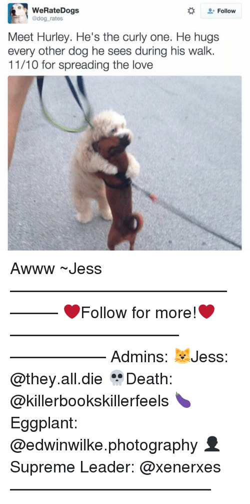 Memes, 🤖, and Hurley: WeRateDogs  Follow  @dog rates  Meet Hurley. He's the curly one. He hugs  every other dog he sees during his walk  11/10 for spreading the love Awww ~Jess —————————————–——— ❤️Follow for more!❤️ ——————————–—————— Admins: 🐱Jess: @they.all.die 💀Death: @killerbookskillerfeels 🍆Eggplant: @edwinwilke.photography 👤Supreme Leader: @xenerxes ——————————–——