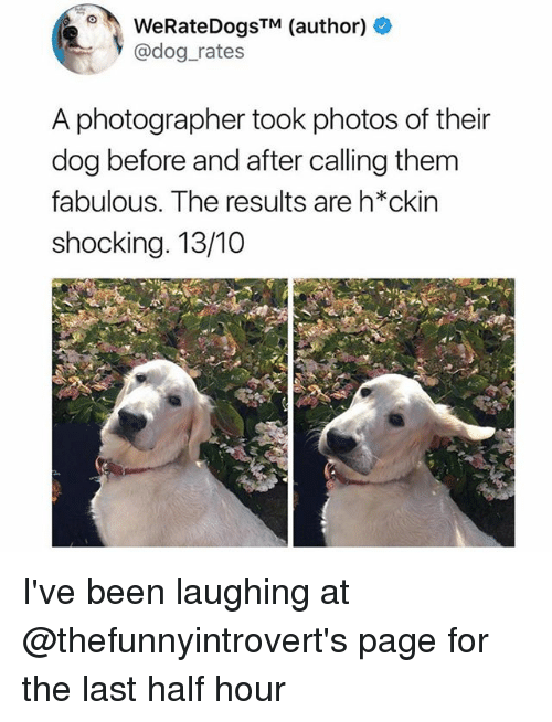 dogging: WeRateDogsTM (author) +  @dog_rates  A photographer took photos of their  dog before and after calling them  fabulous. The results are h*ckin  shocking. 13/10 I've been laughing at @thefunnyintrovert's page for the last half hour