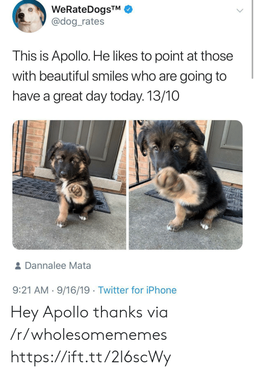 Rates: WeRateDogsTM  @dog_rates  This is Apollo. He likes to point at those  with beautiful smiles who are going to  have a great day today. 13/10  & Dannalee Mata  9:21 AM 9/16/19 Twitter for iPhone Hey Apollo thanks via /r/wholesomememes https://ift.tt/2l6scWy
