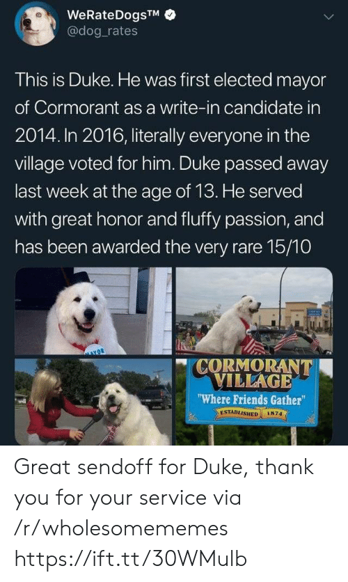 "Friends, Thank You, and Duke: WeRateDogsTM  @dog rates  This is Duke. He was first elected mayor  of Cormorant as a write-in candidate in  2014. In 2016, literally everyone in the  village voted for him. Duke passed away  last week at the age of 13. He served  with great honor and fluffy passion, and  has been awarded the very rare 15/10  CORMORANT  VILLAGE  ""Where Friends Gather  ESTABLISHED  1874 Great sendoff for Duke, thank you for your service via /r/wholesomememes https://ift.tt/30WMulb"