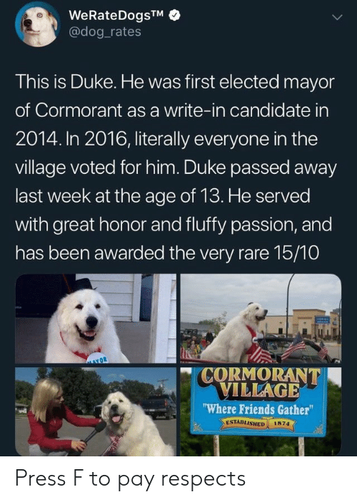 "Friends, Reddit, and Duke: WeRateDogsTM  @dog rates  This is Duke. He was first elected mayor  of Cormorant as a write-in candidate in  2014. In 2016, literally everyone in the  village voted for him. Duke passed away  last week at the age of 13. He served  with great honor and fluffy passion, and  has been awarded the very rare 15/10  CORMORANT  VILLAGE  ""Where Friends Gather""  ESTABLISHED  1874 Press F to pay respects"