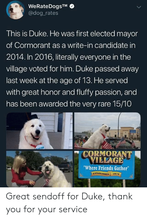"Candidate: WeRateDogsTM  @dog rates  This is Duke. He was first elected mayor  of Cormorant as a write-in candidate in  2014. In 2016, literally everyone in the  village voted for him. Duke passed away  last week at the age of 13. He served  with great honor and fluffy passion, and  has been awarded the very rare 15/10  CORMORANT  VILLAGE  ""Where Friends Gather  ESTABLISHED  1874 Great sendoff for Duke, thank you for your service"