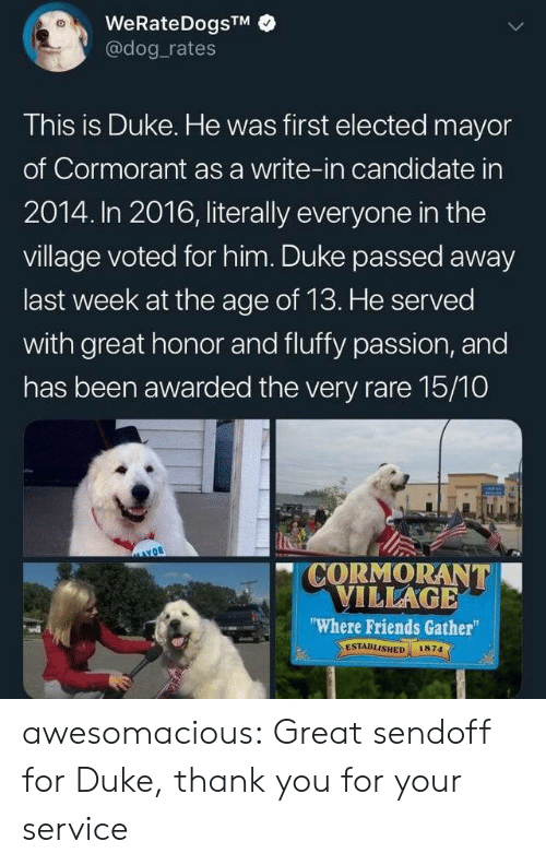 "Candidate: WeRateDogsTM  @dog rates  This is Duke. He was first elected mayor  of Cormorant as a write-in candidate in  2014. In 2016, literally everyone in the  village voted for him. Duke passed away  last week at the age of 13. He served  with great honor and fluffy passion, and  has been awarded the very rare 15/10  CORMORANT  VILLAGE  ""Where Friends Gather  ESTABLISHED  1874 awesomacious:  Great sendoff for Duke, thank you for your service"