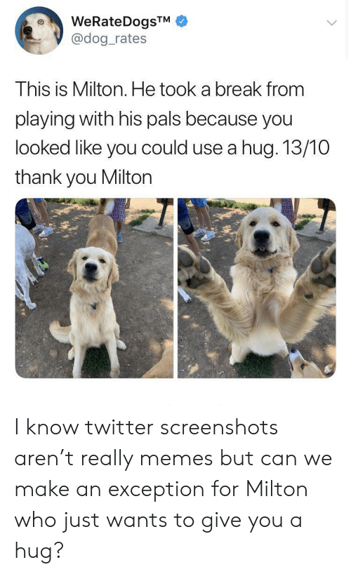 Memes, Twitter, and Thank You: WeRateDogsTM  @dog_rates  This is Milton. He took a break from  playing with his pals because you  looked like you could use a hug. 13/10  thank you Milton I know twitter screenshots aren't really memes but can we make an exception for Milton who just wants to give you a hug?