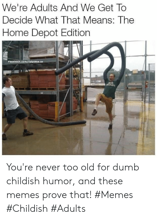 Dumb, Facebook, and Memes: We're Adults And We Get To  Decide What That Means: The  Home Depot Edition  Facebook.com/listables.co You're never too old for dumb childish humor, and these memes prove that! #Memes #Childish #Adults