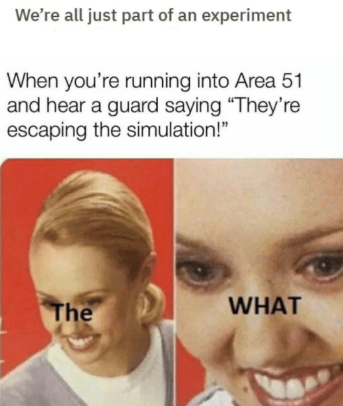 """experiment: We're all just part of an experiment  When you're running into Area 51  and hear a guard saying """"They're  escaping the simulation!""""  WHAT  The"""