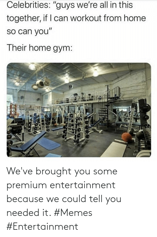 needed: We've brought you some premium entertainment because we could tell you needed it. #Memes #Entertainment