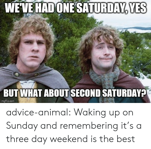 Advice, Tumblr, and Animal: WEVE HAD ONESATURDAY, YES  BUT WHAT ABOUT SECOND SATURDAY?  imgflip.com advice-animal:  Waking up on Sunday and remembering it's a three day weekend is the best