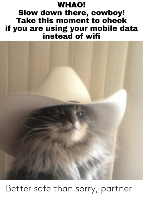 Sorry, Mobile, and Cowboy: WHAO!  Slow down there, cowboy!  Take this moment to check  if you are using your mobile data  instead ot witi Better safe than sorry, partner