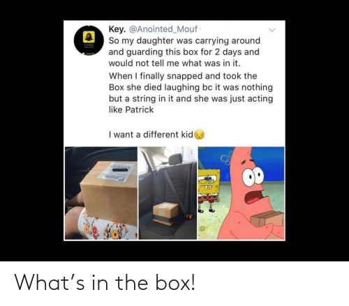 box: What's in the box!