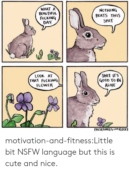 Fucking Day: WHAT A  BEAUTIFUL  FUCKING  DAY  NOTHING  BEATS THIS  SHIT  SHIT ITS  LOOK AT  THAT FuCKING  FLOWER  oOD To 6E  ALIVE  FALSEKNE ES com 0201 motivation-and-fitness:Little bit NSFW language but this is cute and nice.