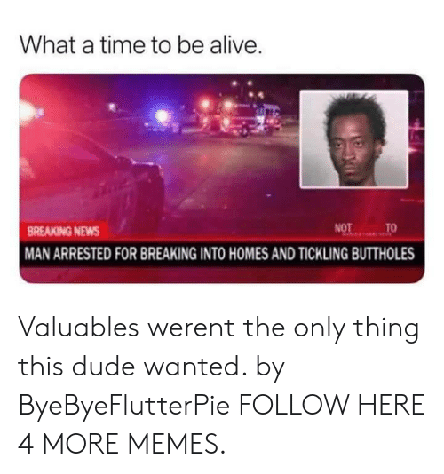 Alive, Dank, and Dude: What a time to be alive  BREAKING NEWS  MAN ARRESTED FOR BREAKING INTO HOMES AND TICKLING BUTTHOLES Valuables werent the only thing this dude wanted. by ByeByeFlutterPie FOLLOW HERE 4 MORE MEMES.