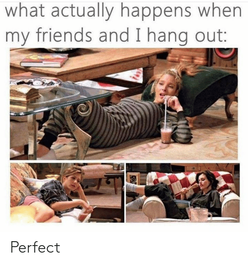 Dank, Friends, and 🤖: what actually happens when  my friends and I hang out: Perfect